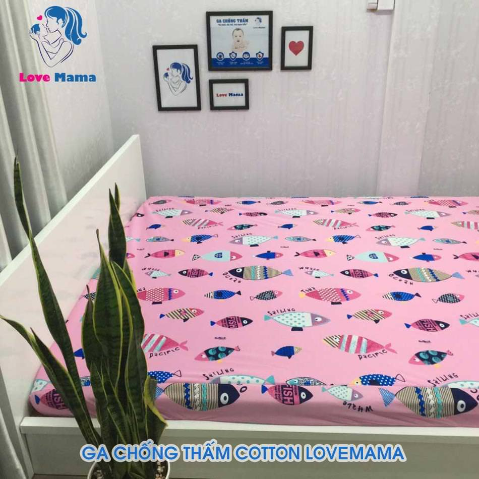 Ga chống thấm màu hồng vân hình cá vải cotton ga 1m6 cao cấp