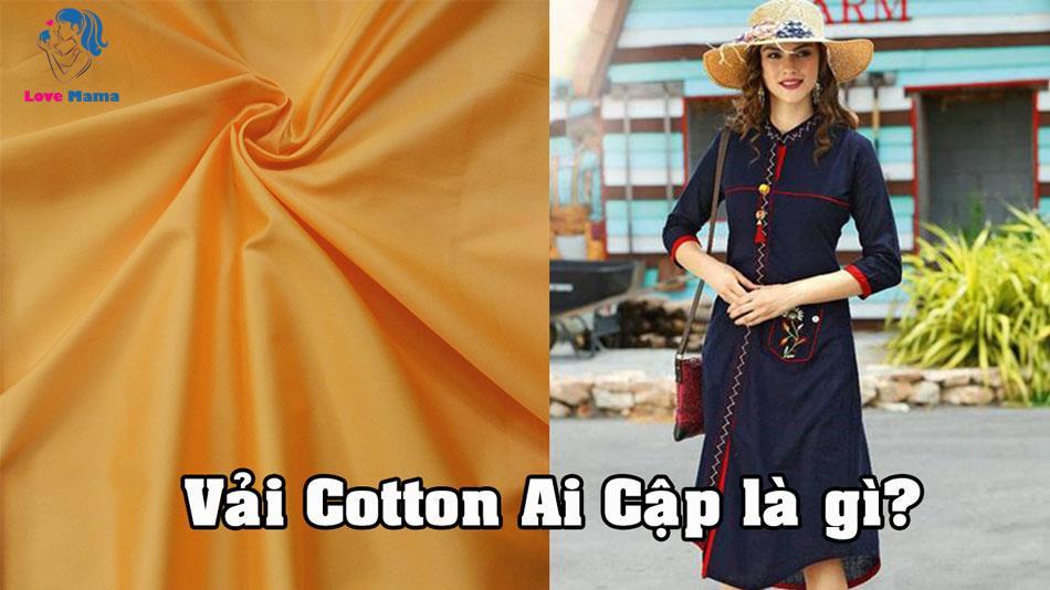 Vải Cotton Ai Cập là gì?