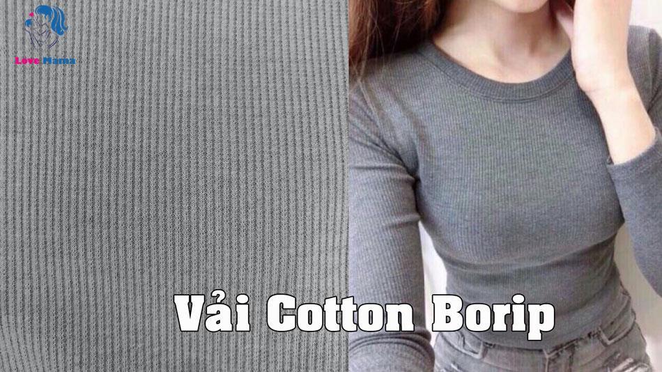 Vải Cotton Borip là gì